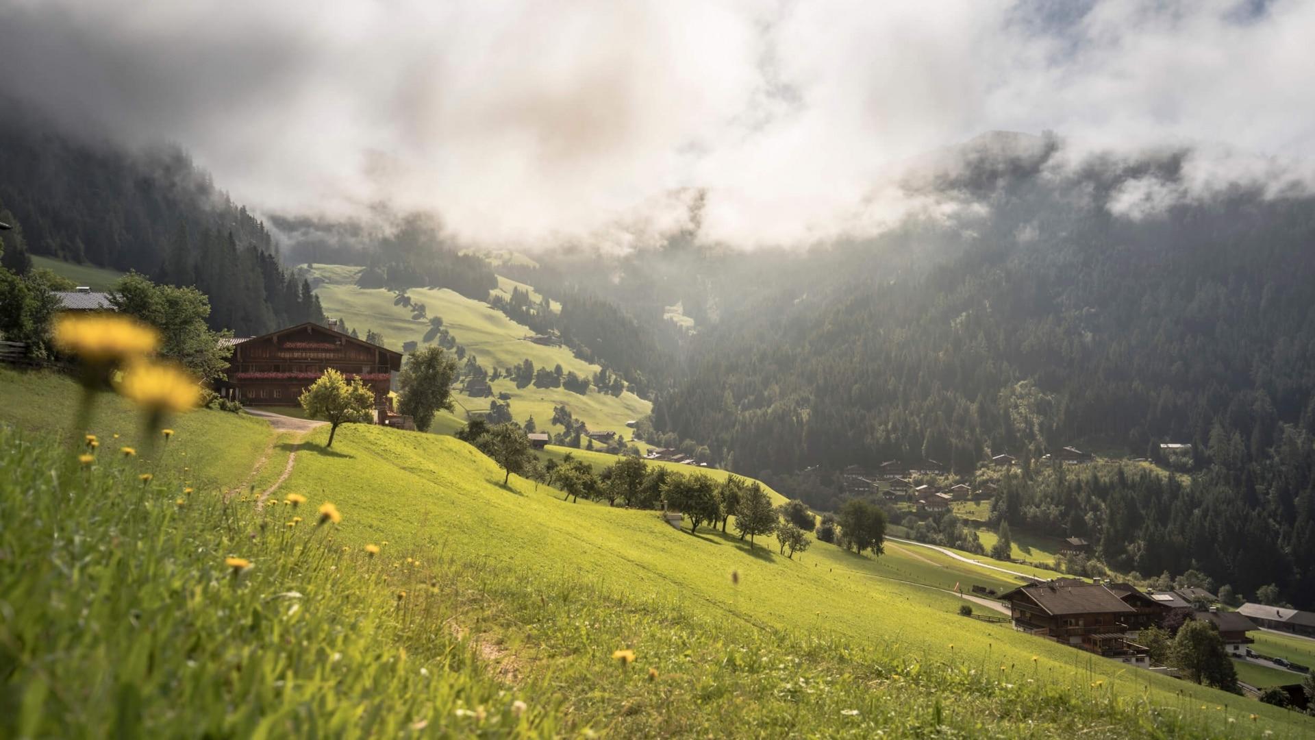 Alpbachtal Tourismus