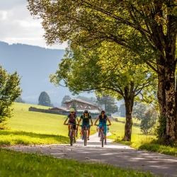 Mountainbiker am Radweg © Erwin Haiden