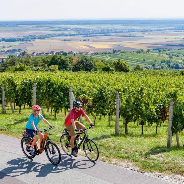 Genussradfahren © Burgenland Tourismus Daniel Simon