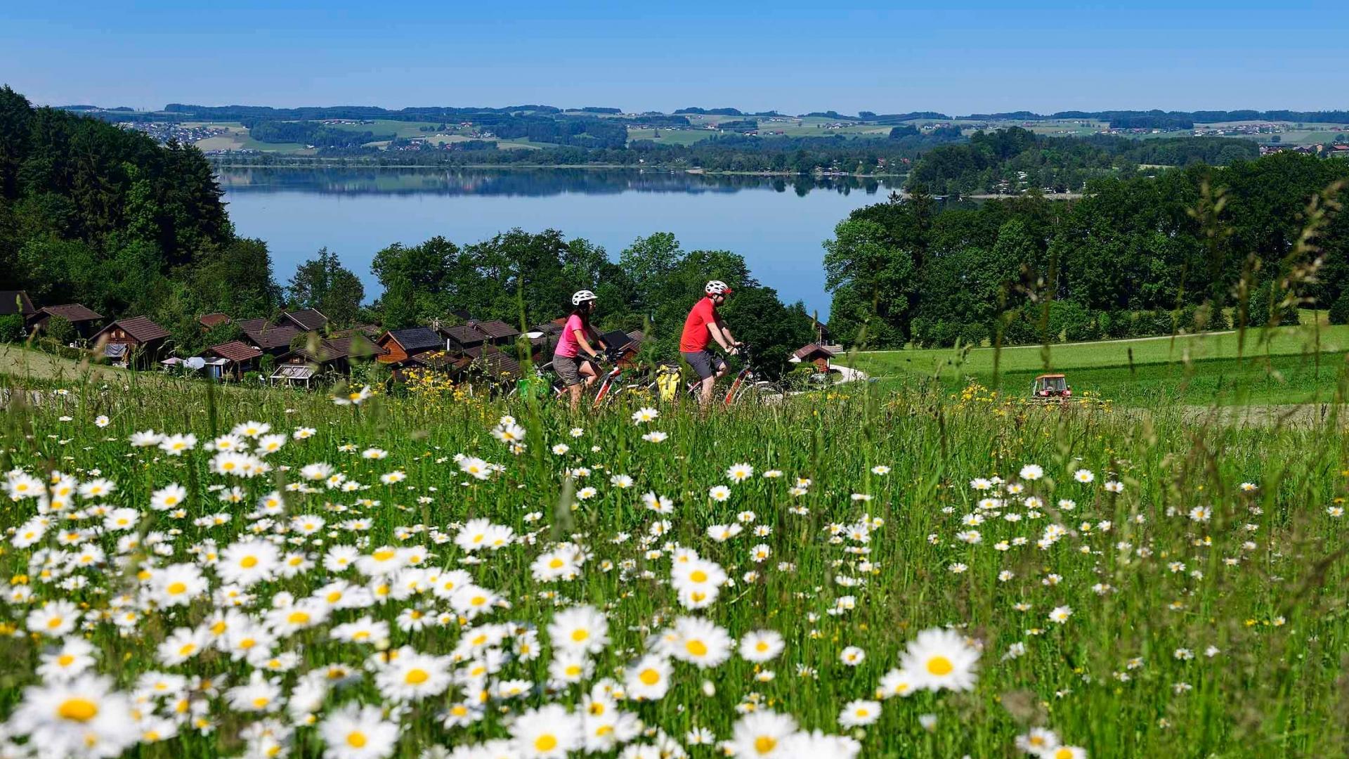 Salzburger Seenland - Radfahren in Lochen © Salzburger Seenland Velodrom - Eisele Hein