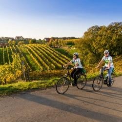 Weinwandern © TVB Region Bad Radkersburg pixelmaker.at
