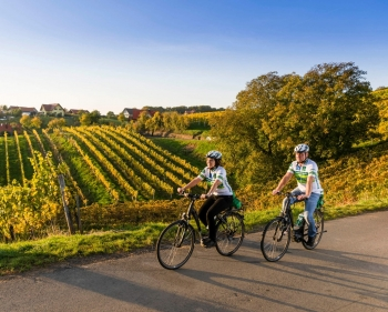 Weinwandern © TVB Region Bad Radkersburg pixelmaker.at