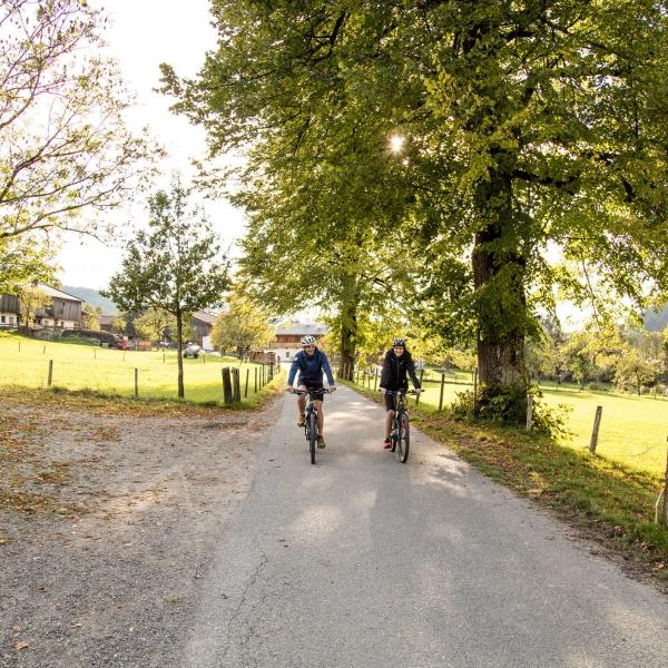 E-Biken in den Kitzbüheler Alpen © Defrancesco