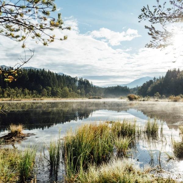 Egelsee Millstätter See © Österreich Werbung - Susanne Einzenberger
