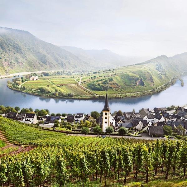 Mosel Rheinland Pfalz Moselschleife © Deutsches Weininstitut GmbH