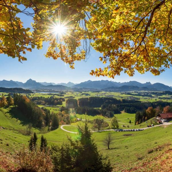Goldener Oktober in der Region Allgäu Bayern © Shutterstock - Wolfgang Filser