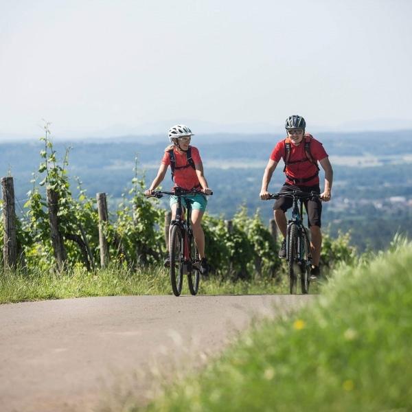 Fahrradurlaub in der Steiermark © Velontour