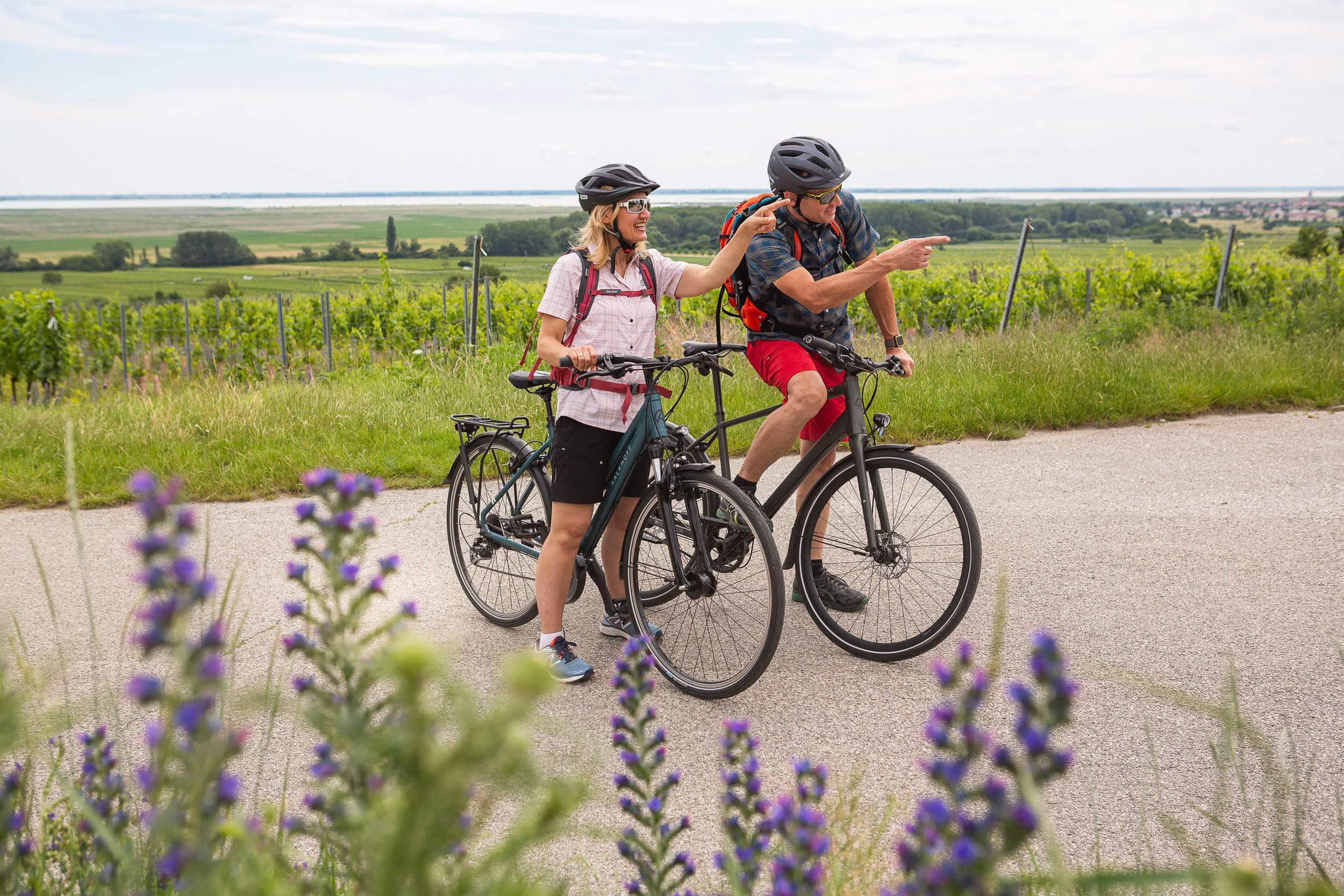 Fahrradtour im Burgenland © Velontour