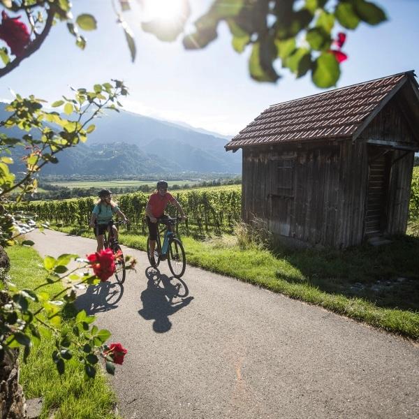 Radtour durch die Weinberge © Velontour