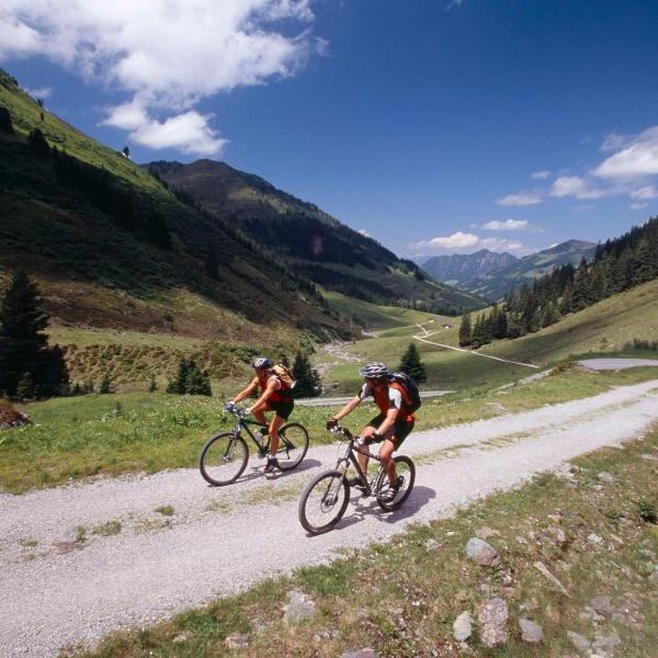 Mountainbiken im Alpbachtal © Alpbachtal Tourismus