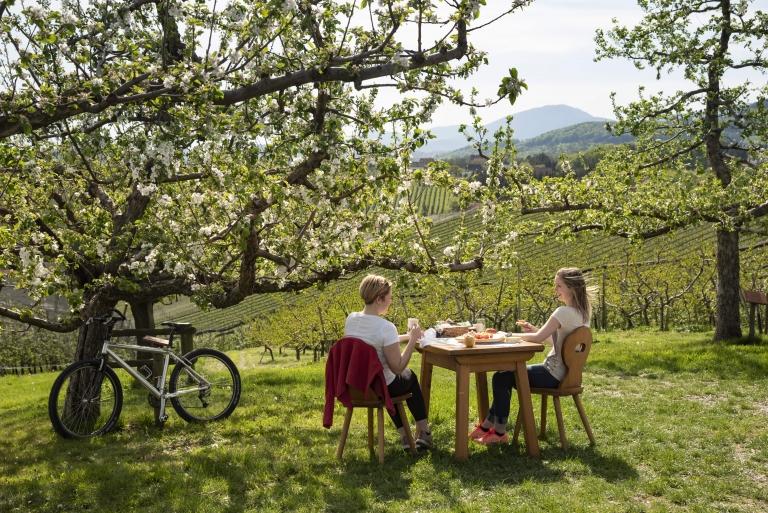 Radpause im Apfelgarten © Oststeiermark Tourismus, Bernhard Bergmann