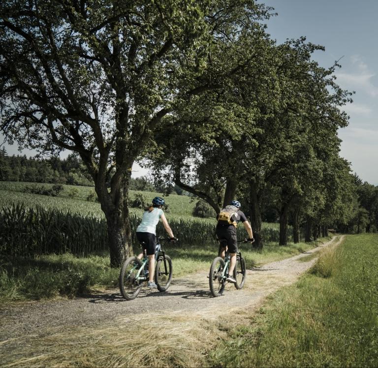 Vitalwelt Bad Schallerbach Mountainbiken © Oberoesterreich Tourismus GmbH Robert Maybach