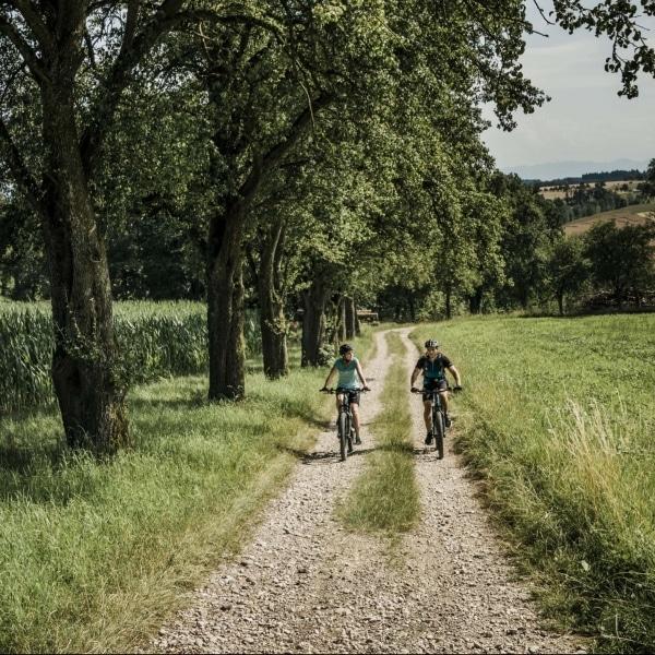 Vitalwelt Bad Schallerbach 02 © Oberoesterreich Tourismus GmbH_Robert Maybach