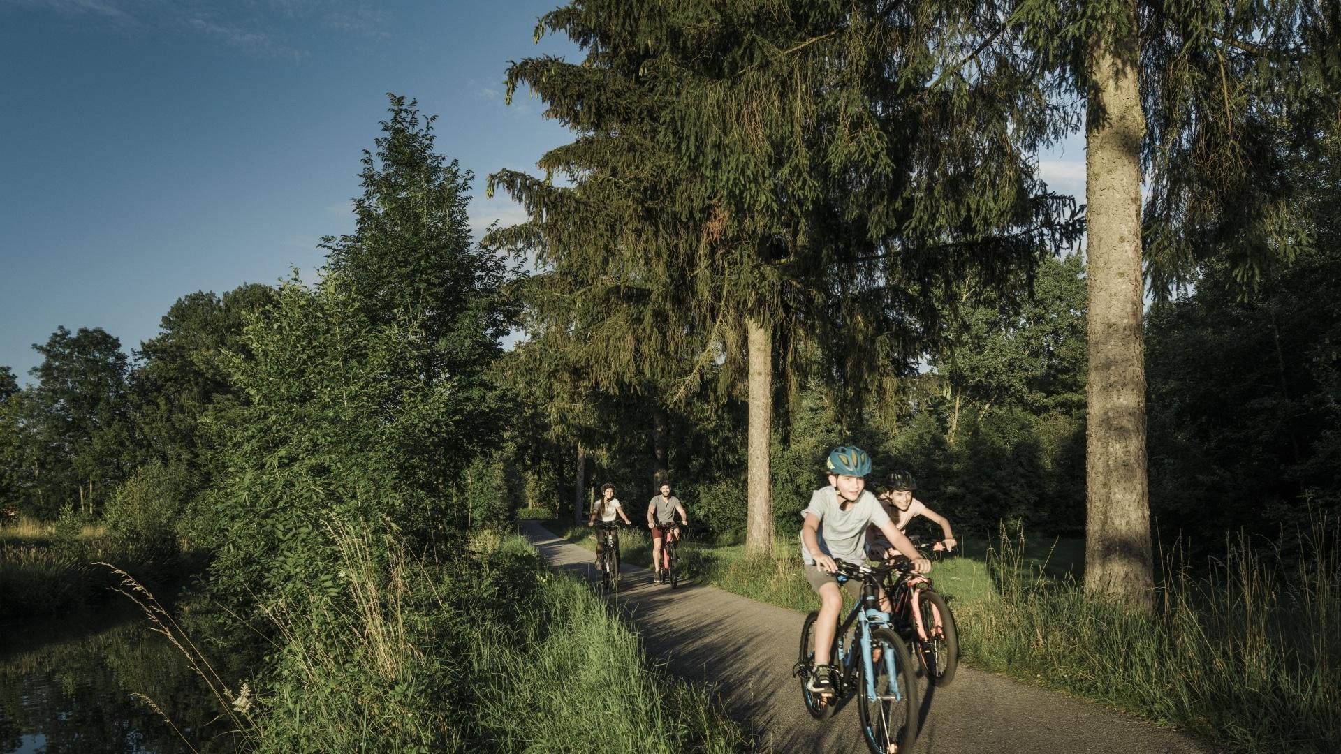 Vitalwelt Bad Schallerbach Radfahren Trattnachtal-Radweg Grieskirchen © Oberoesterreich Tourismus GmbH Robert Maybach
