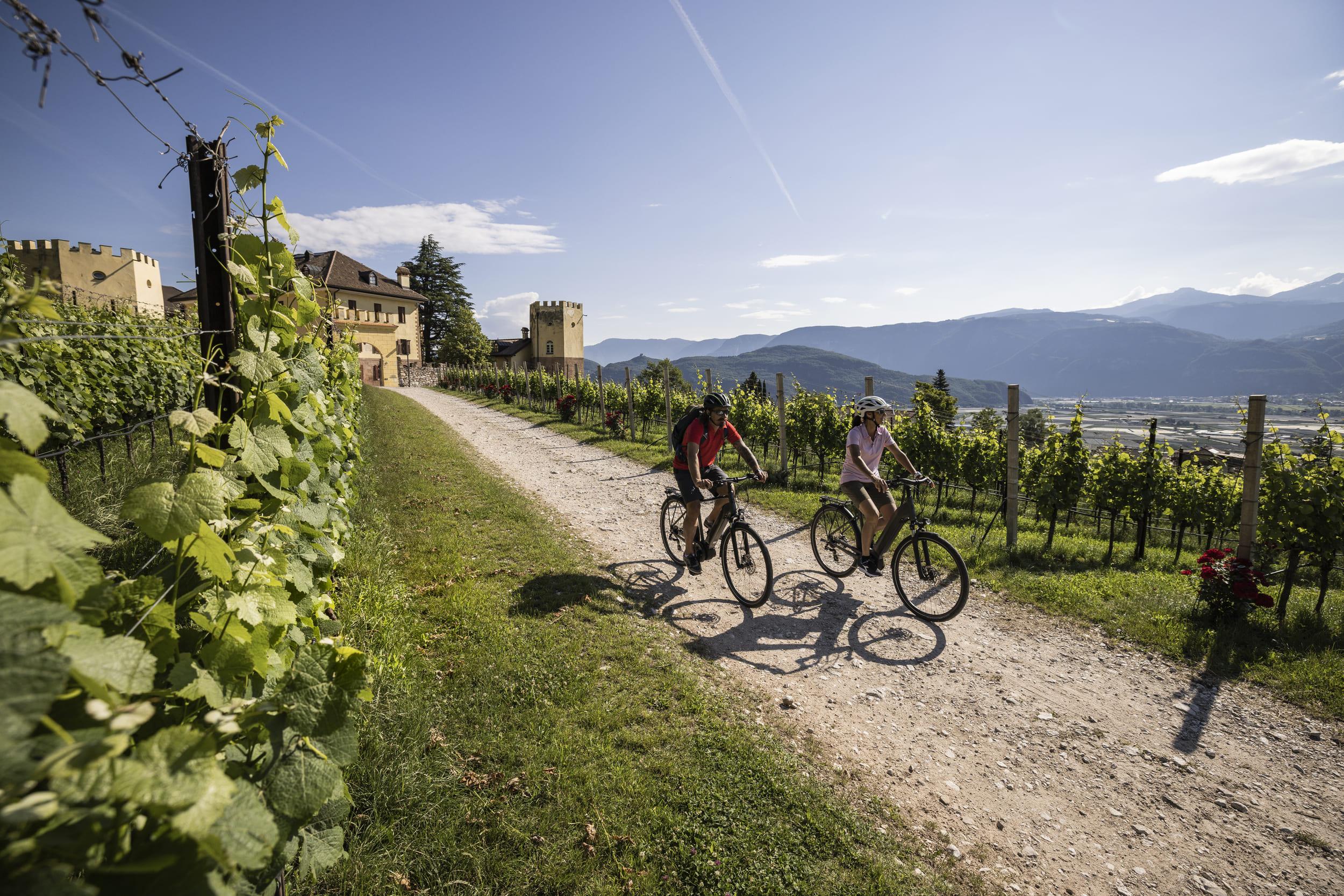 Radeln durch die Weinberge in Tramin © Velontour